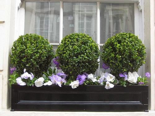 Apr gy ny r s gek tavasz az ablakban ragyog an sz nes - Winter flowers for balcony ...