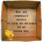 I cordially invite you to see my pictures on Flickr. Just.click the rose in the box.