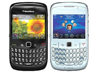 Cara Merawat Blackberry