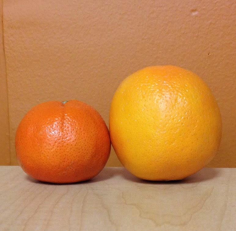 orange, tangerine, tangello, halo, cuties, yellow