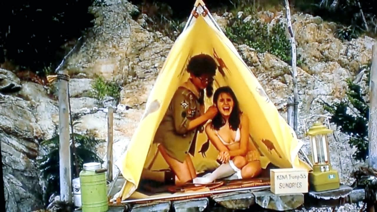 moonrise kingdom analysis outline Describe the main problem of the film what is the inciting incident act 2 describe the action that takes place in act ii act ii is where all the action takes place act 3 this is how the film resolves itself do not spoil the ending for the audience.