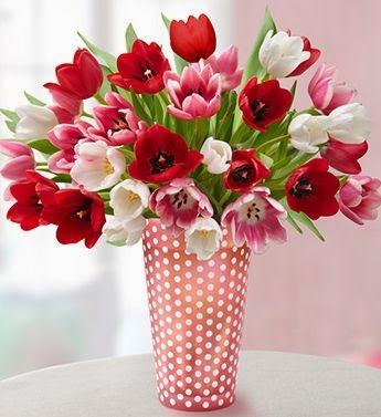 anthemionflowers τουλίπες