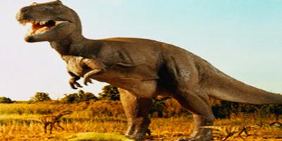Dinosaurs Walked Landscape