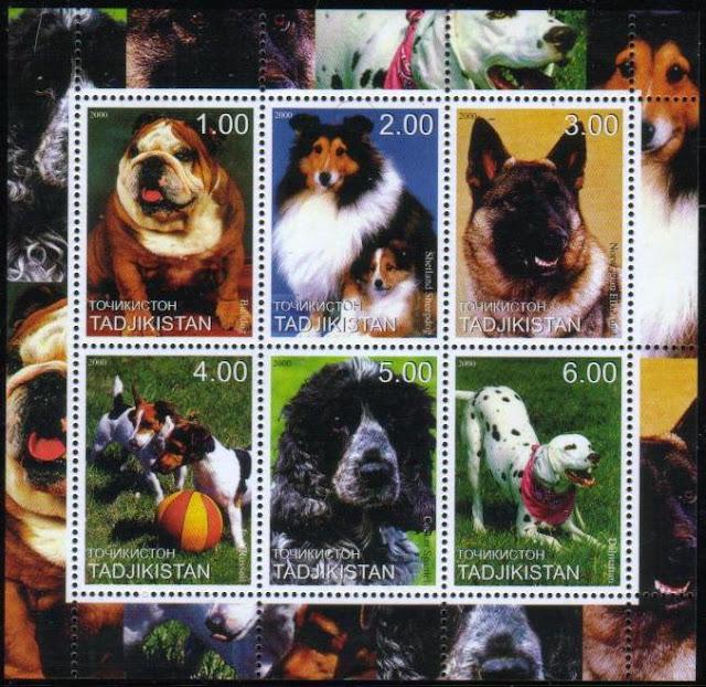 2000年タジキスタン共和国 ブルドッグ シェットランド・シープドッグ ノルウェジアン・エルクハウンド ジャック・ラッセル・テリア コッカー・スパニエル ダルメシアンの切手シート