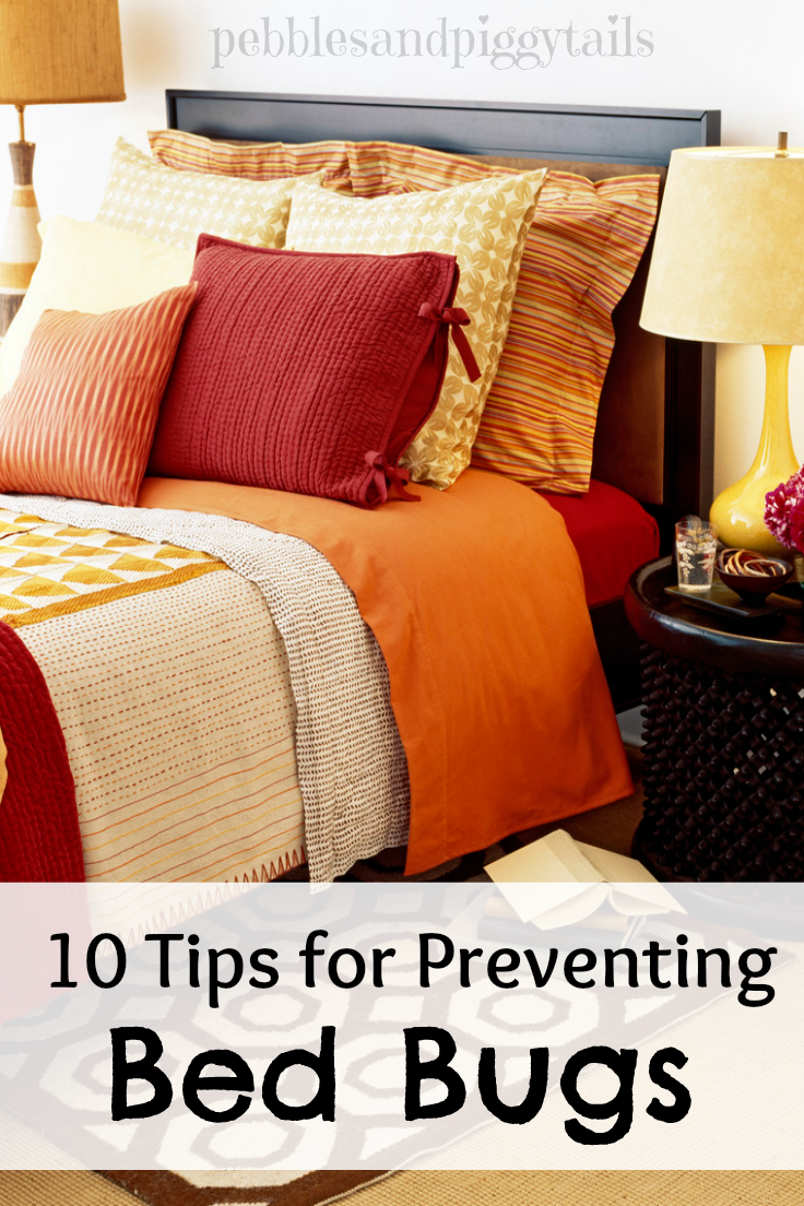 Preventing Bed Bugs From Getting In My Home