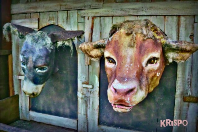 figuras de vaca y burro de belen viviente