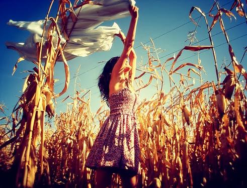 Wind Field Feel Free Girl