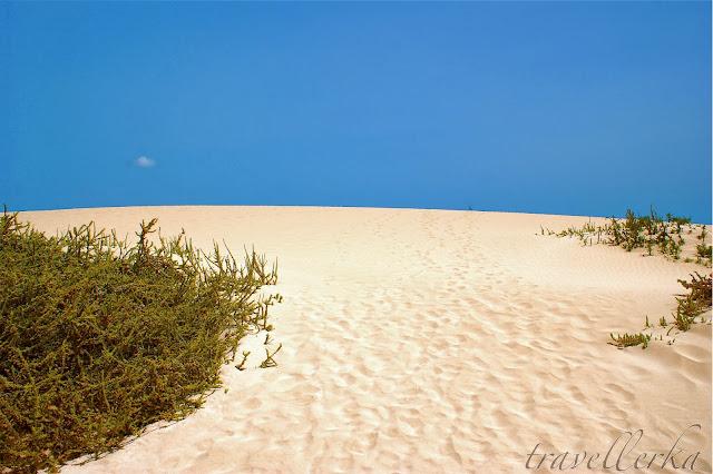 dunas corralejo