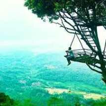 Rumah Pohon Tempat Wisata Desa Penusupan Purbalingga Menawarkan Pemandangan Yg Luar Biasa