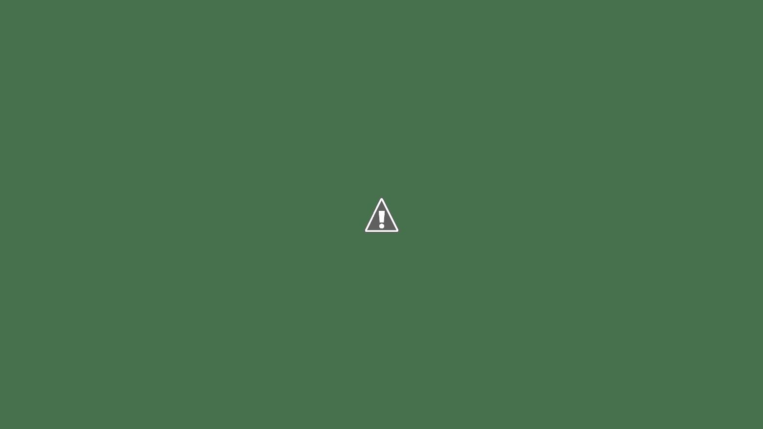 ravioli dolci fritti & al forno