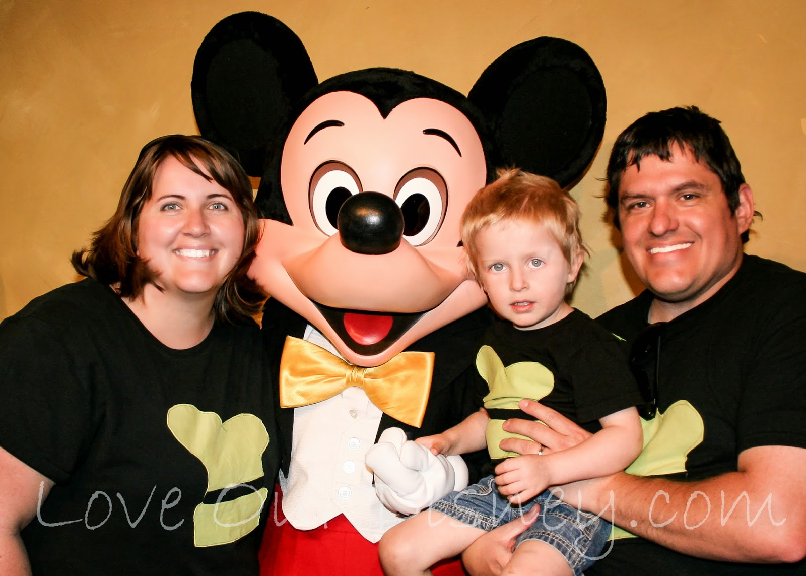 How to get those great Disney vacation photos from LoveOurDisney.com