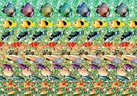 3d Eye Illusions8