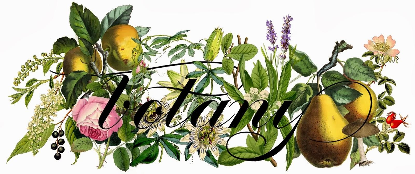 BOTANY {floral studio}