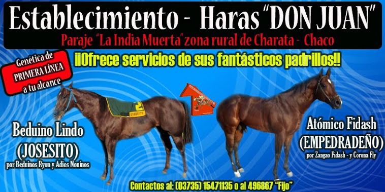 HARAS DON JUAN
