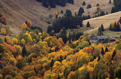 Autumn landscape in the french Alps around Bellevaux