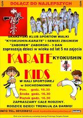 Zajęcia z karate