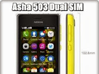 Nokia Asha 503, Pelengkap Keluarga Asha