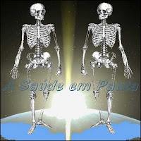 Normalmente o número de ossos de um adulto é 206