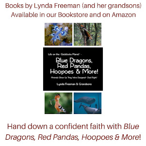Blue Dragons, Red Pandas, Hoopoes & More!