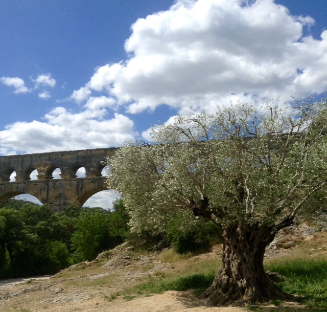 beautiful day at the Pont du Gard