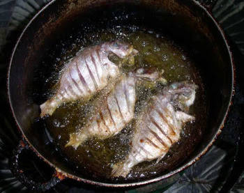 Fish frying in a pan