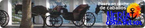 Carruajes tirados por caballos, un transporte público tradicional para descubrir Nerja
