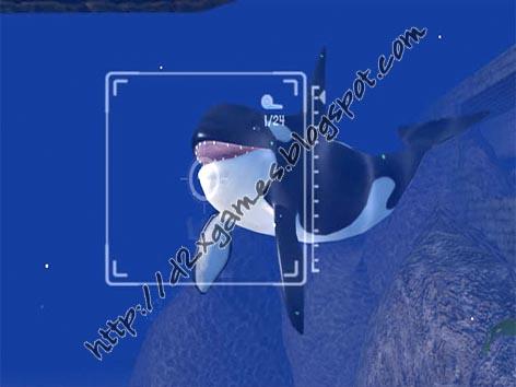 Free Download Games - Sea Life Safari