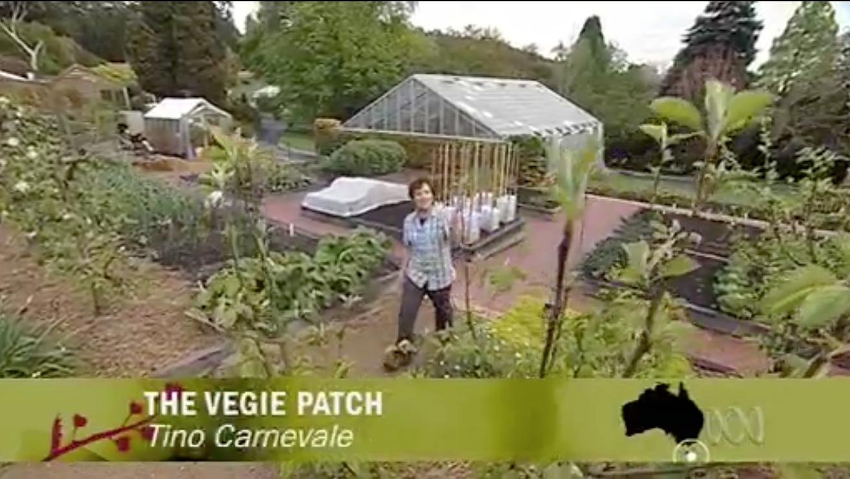 Growing steady gardening australia returns for Gardening zones australia