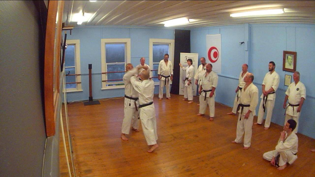 Wonderful As Taira Sensei Has Expressed To Us, The Bunkai, Or Kumite, For The  Gradings Need To Demonstrate Good Basic Technique, With Good Timing And  Focus.