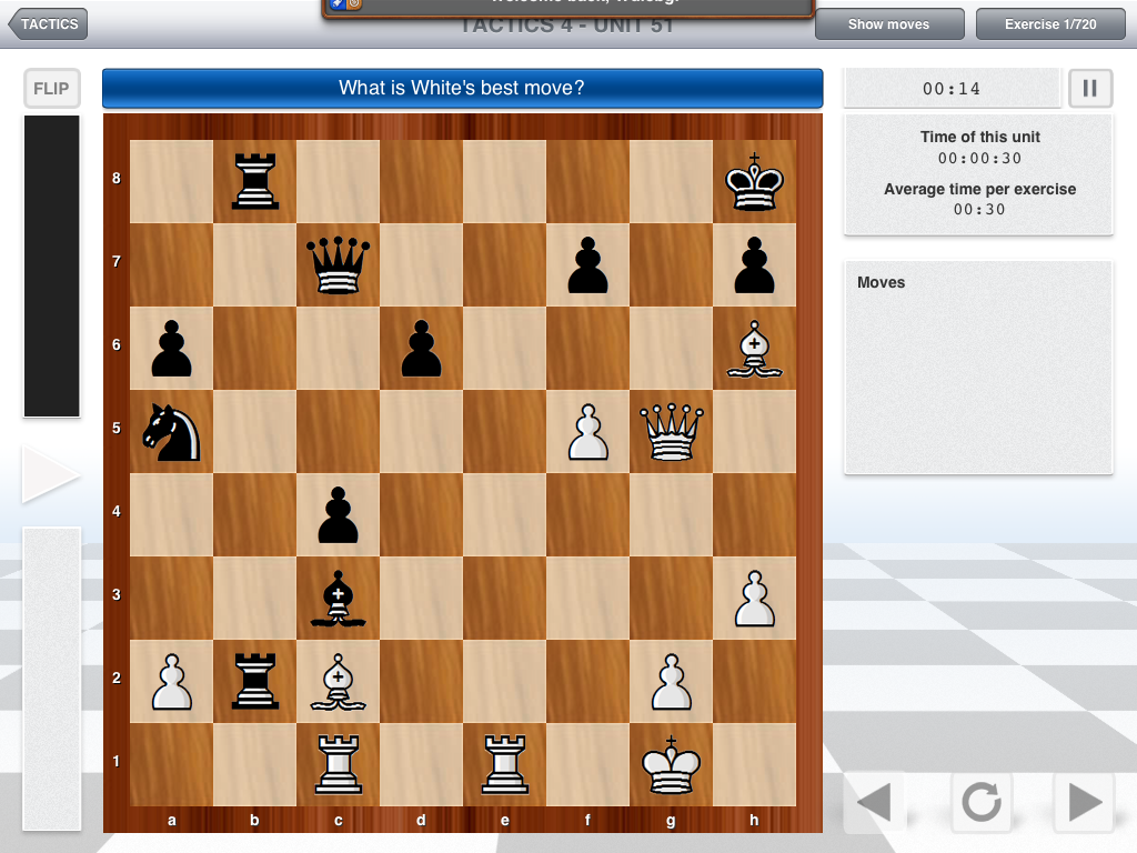 Become a chess master How to become a grandmaster