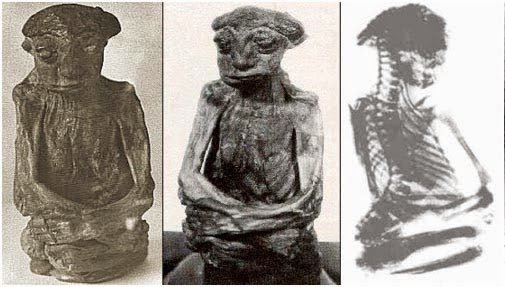 "The Mysterious ""Leprechaun"" Mummy of Wyoming"