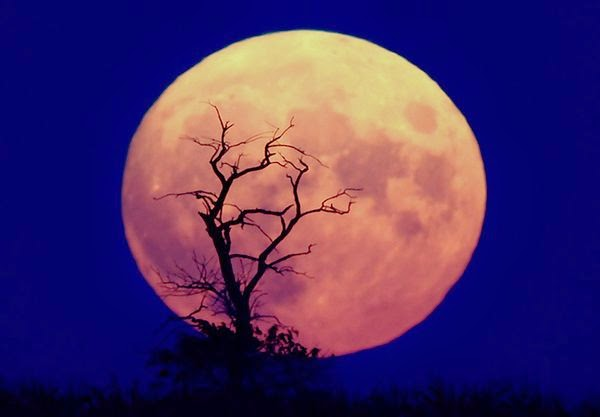 full moon picture