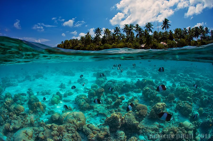 3. Island by Marcus Pauli