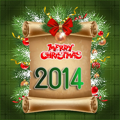 Enjoy the Christmas Holidays happy new year 2014