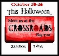 Crossroads Blog Tour Oct 2013
