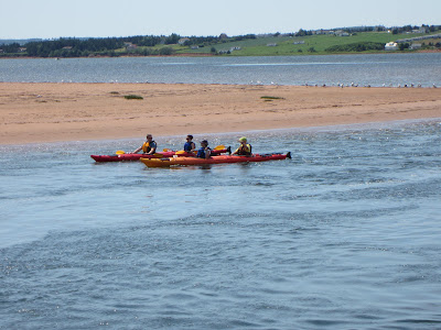 Kayaking North Rustico Harbour
