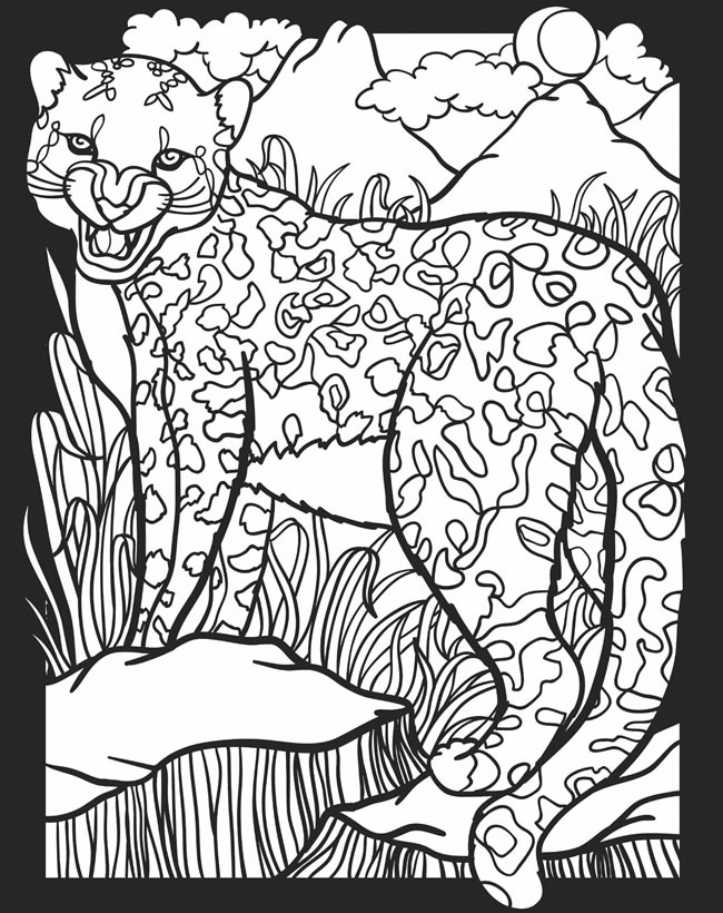 nocturnal animals coloring pages - photo#13