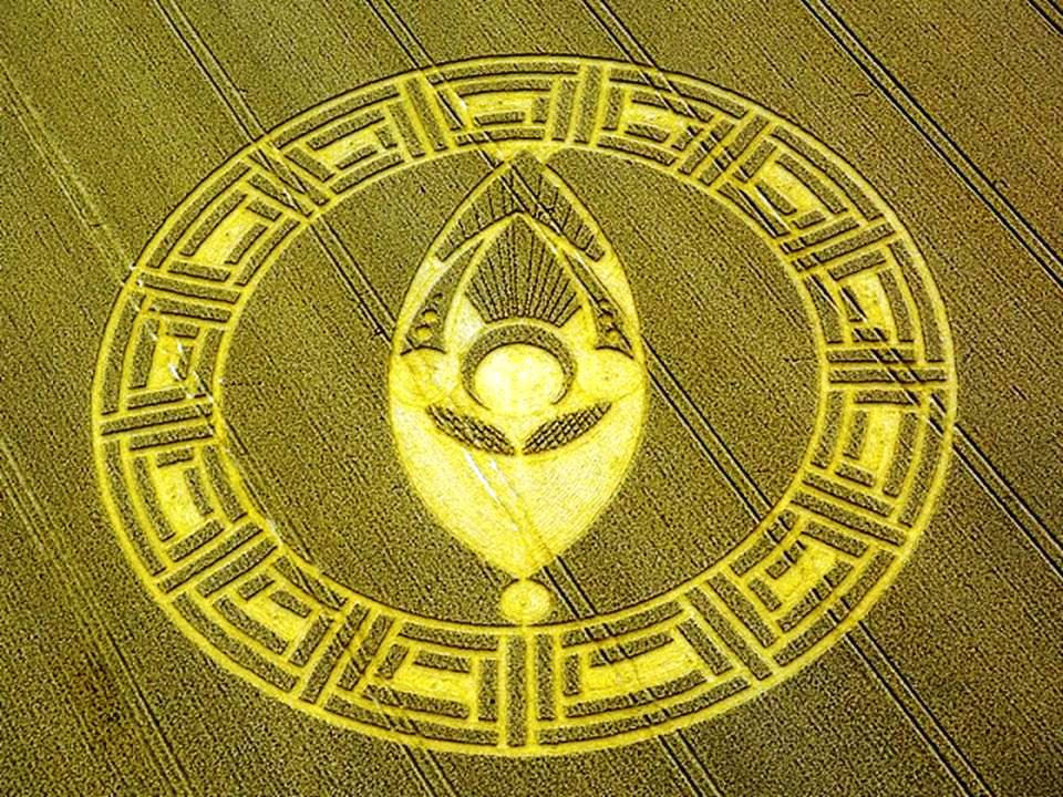 Aerial View Tricopter Fpv Of The Crop Circle At Cooks Plantation