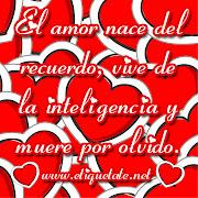 con rosas rosadas alrededor un corazon que dice te amo imagenes de amor de corazones rosas