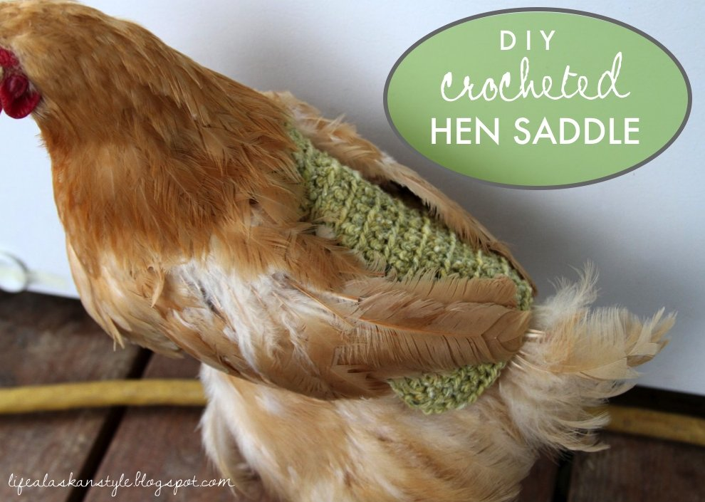 Life Alaskan Style Crochet Pattern For Chicken Saddleapronsweater
