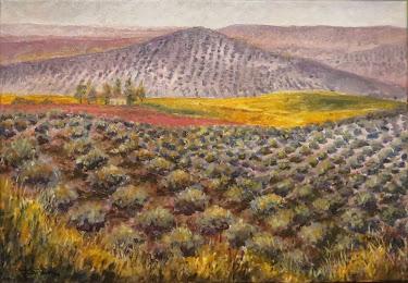 Cortijo San José y cerro Corbulillo, Lahiguera (10P)