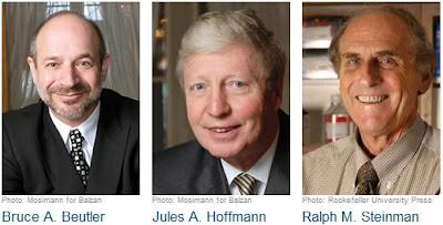 Photo de Beutler, Hoffmann et Steinmann - Prix Nobel en Médecine 2011