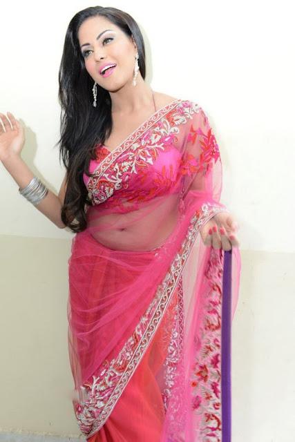 pakistan Actress Veena Malik Hot Saree Stills