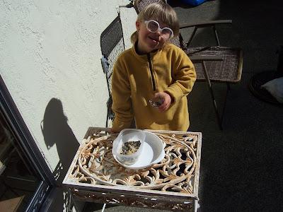 Creating a Montessori Garden Classroom {Montessori on a Budget}