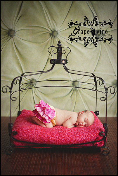 florida kissimmee newborn baby photographer