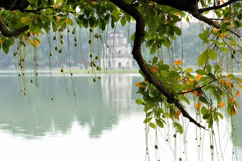 পাঠকের গল্প-ভাবনা পড়ুন