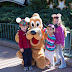 Memory 157 - A Day at Disney's Hollywood Studios: Part 1, Entering the Park and Pluto Meet & Greet