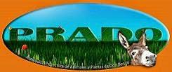 TEAMING POR LOS ANIMALES DE PRADO DON BENITO