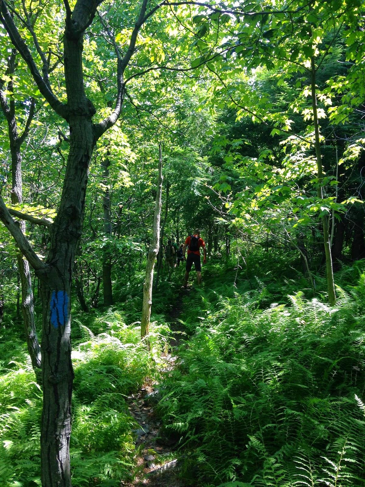 Hiking Pennsylvania Devil S Pulpit The Appalachian Trail