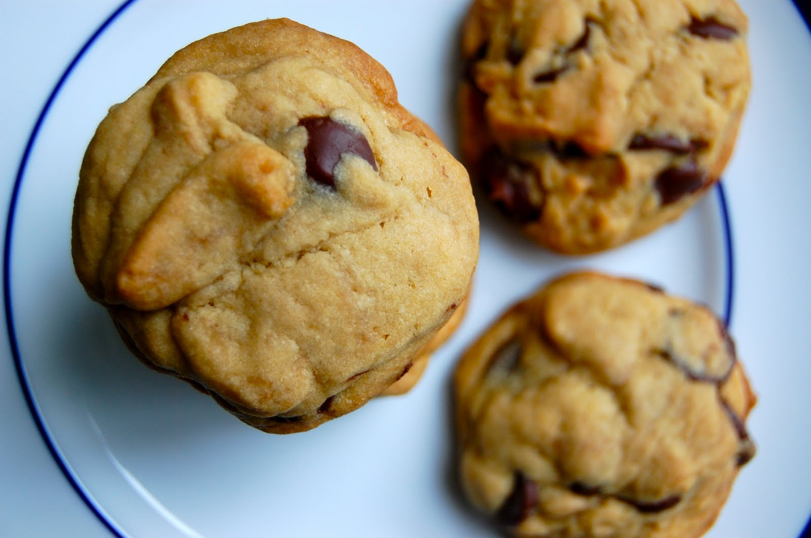 Chocolate Chip Pudding Cookies: A Little Something Special | Lady ...